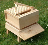 Brood box